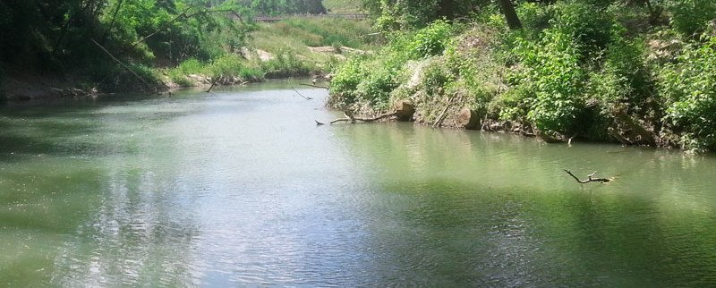 Pesca d'acqua dolce fiume Elsa