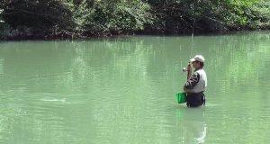 Pesca alla passata nel fiume Tevere
